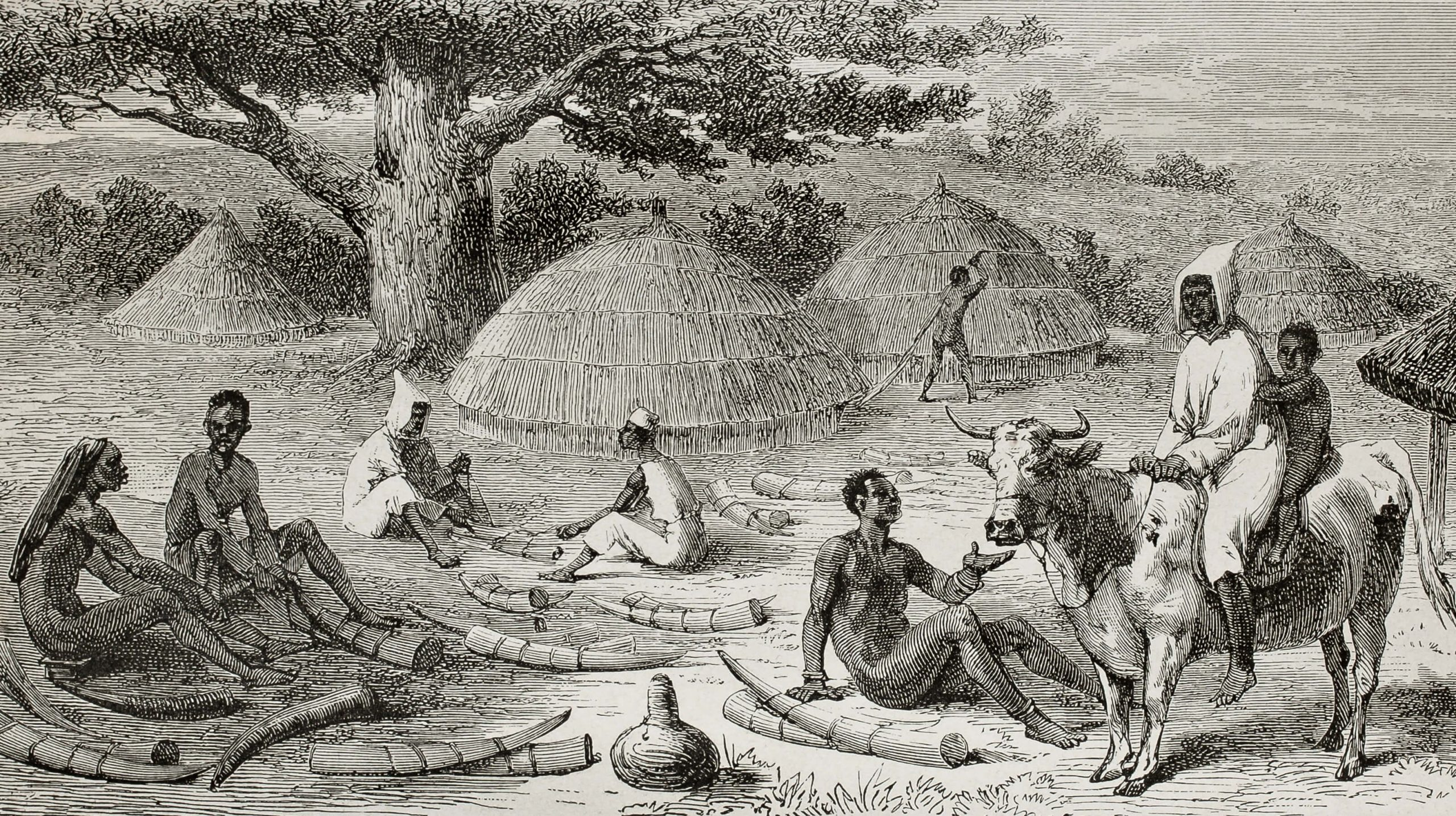 Old illustration of ivory traders